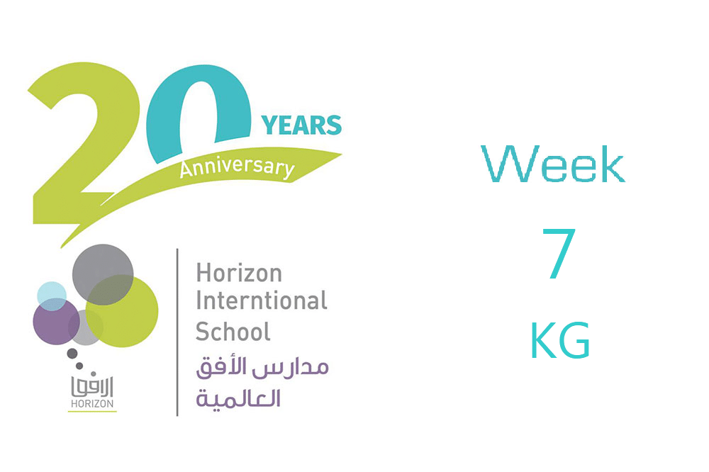KG Week #7